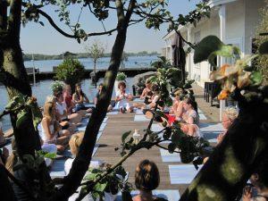 Dolfijn Wellness Yoga Lessen